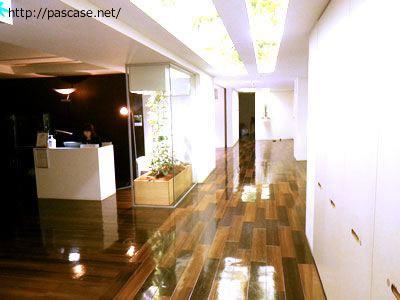 パソナグループ本部3階、天井にも観葉植物があります